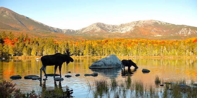 Visit Maine with Village Travel